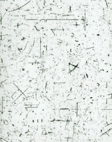 Abstrakt (S 389)